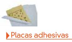 Placas adhesivas matainsectos